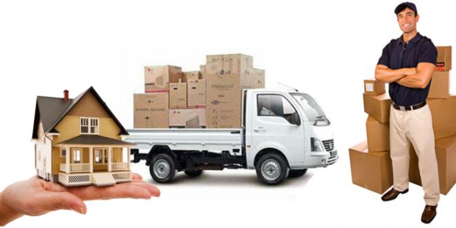 Dai Nam Company specializes in providing