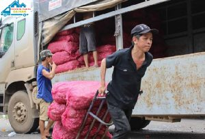 Dịch vụ cung ứng lao động chuyên nghiệp, giá rẻ tại Đại Nam